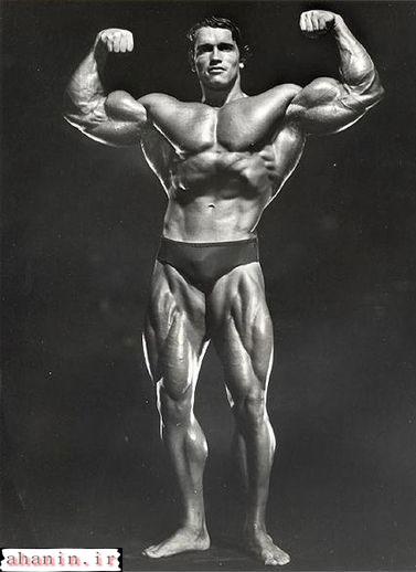 عکس بازوهای آرنولد