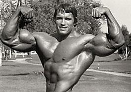 آرنولد
