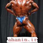 سایت آهنین رانی راکل در آرنولد کلاسیک 2011